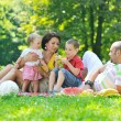 Happy young couple with their children have fun at park — Stock Photo #6788598