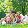 Happy young couple with their children have fun at park — Stock Photo #6791776