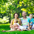 Happy young couple with their children have fun at park — Stock Photo #6819005