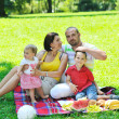 Happy young couple with their children have fun at park — Stock Photo #6835177
