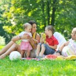 Happy young couple with their children have fun at park — Stock Photo #6835234