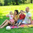 Happy young couple with their children have fun at park — Stock Photo #6835256
