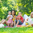 Happy young couple with their children have fun at park — Stock Photo #6835662
