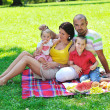 Happy young couple with their children have fun at park — Stock Photo #6835757