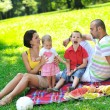 Happy young couple with their children have fun at park — Stock Photo #6836926