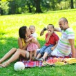 Happy young couple with their children have fun at park — Stock Photo #6837078