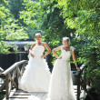 Beautiful bride outdoor — Stok fotoğraf