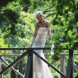 Beautiful bride outdoor — Stock Photo #6856911