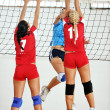 Girls playing volleyball indoor game — Stock Photo #6966001