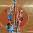 Girl playing volleyball game — Lizenzfreies Foto