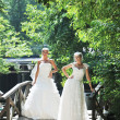 Beautiful brides outdoor — Stockfoto
