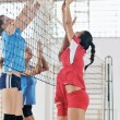 Girls playing volleyball indoor game — Stock Photo #7050707