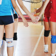 Girls playing volleyball indoor game — Stock Photo #7066330