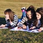Grupo de jóvenes trabajando en equipo portátil al aire libre — Foto de Stock