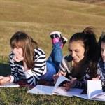 Grupa nastolatków pracujących na zewnątrz laptopa — Zdjęcie stockowe