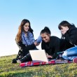 Group of teens working on laptop outdoor — Stockfoto #7830823