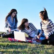 Group of teens working on laptop outdoor — Stockfoto #7941028