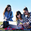 Group of teens working on laptop outdoor — Stock Photo #7941039