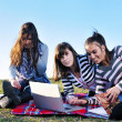 Group of teens working on laptop outdoor — Stock Photo #7941047