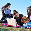 Stock fotografie: Group of teens working on laptop outdoor