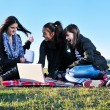 Group of teens have fun outdoor — ストック写真