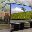 Big plasma screen indor - Foto Stock