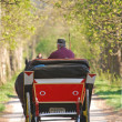 carriage — Stock Photo