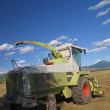 Tractor on farm — Stock Photo