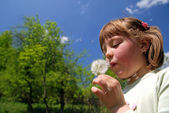 Cute girl blowing dundelion — Stock Photo