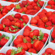 Fresh ripe strawberries — 图库照片
