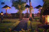 热带夜 — 图库照片