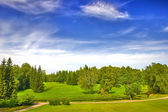 Green park under blue sky with clouds — Stock Photo