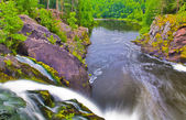 Forest lake and small waterfall — Stock Photo