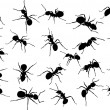 Twenty two ant silhouettes — Stock Vector #6785705