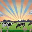 Stock Vector: Drove of cows on field