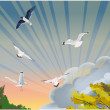 Illustration with color gulls and trees — Stock Vector