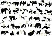 Black animals alphabet — Stock Vector