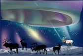 Deers under aurora illustration — Stock Vector