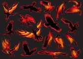 炎のワシのセット — ストックベクタ