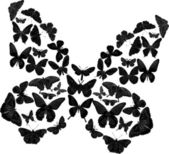 Black complicated butterfly on white — Stock Vector