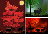 Three compositions with deers in forest — Stock Vector