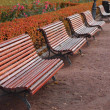 Stock Photo: Park Benches