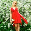 Stock Photo: Young beautiful woman in a red dress