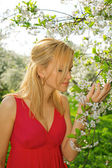 Young woman in red dress enjoying smell of blooming tree — Stockfoto