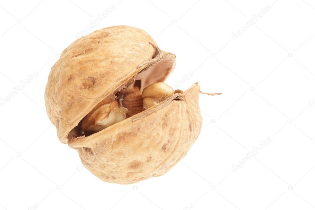 Macro of walnuts isolated on white background — Stock Photo #7370837