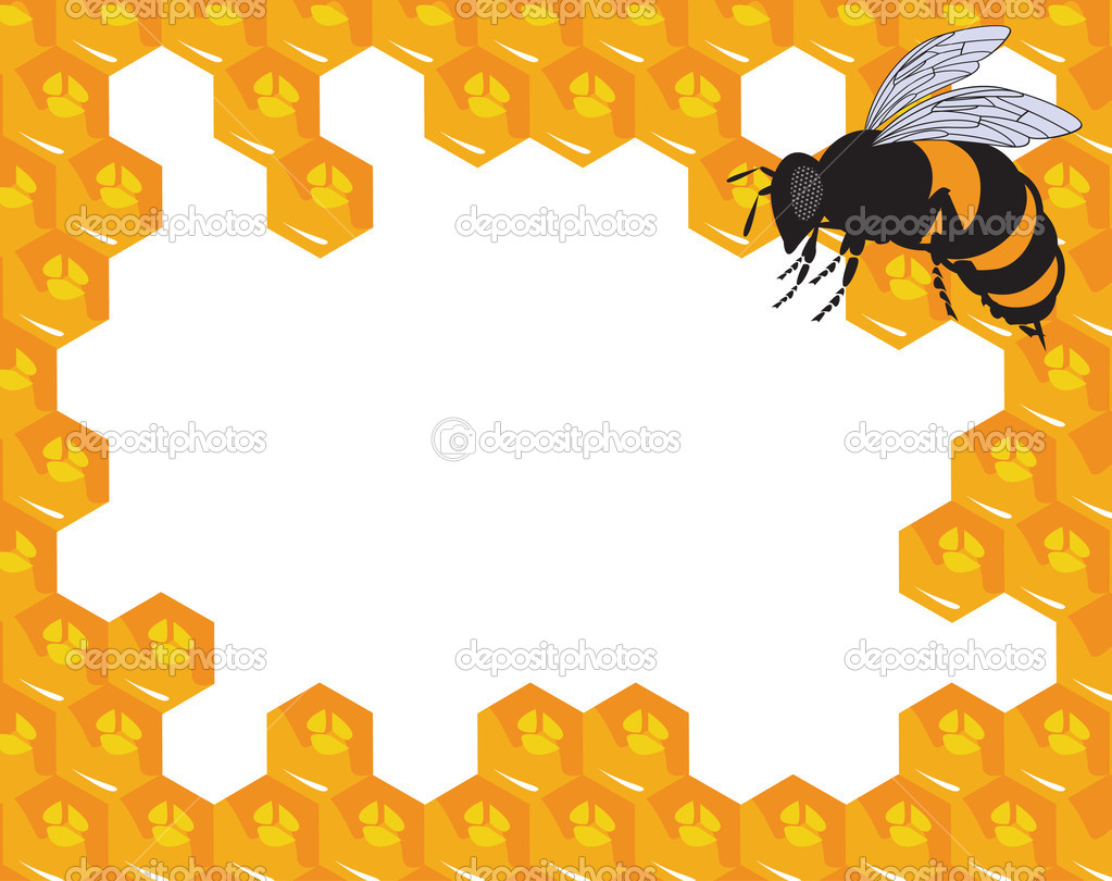 The vector bees and honeycomb with honey eps file  Stock Vector #6811223