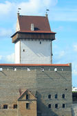Long Hermann tower in the Narva Castle — Stock Photo