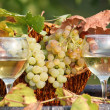 Two glasses of white wine - Stockfoto