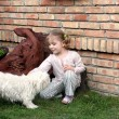 Beauty little girl play with Maltese puppy pet — Stock Photo