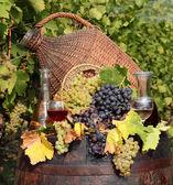 Vigne rouge et vin blanc — Photo